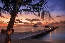 maldives beach trees at sunset wall mural maldives beach trees peaceful maldives sunset wall mural photo wallpaper