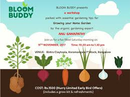 Urban Gardening Bangalore Bloom Buddy U0027s Gardening Workshop With Anu Ganapathy At Koramangala