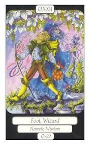 book of kaos tarot tarot and magick tarot tarot