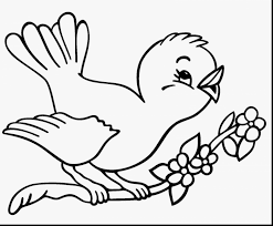 superb bird with wings coloring page with bird coloring pages