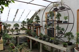 inside our greenhouse where this is a wide variety of indoor