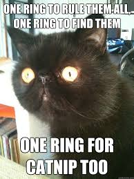 One Ring To Rule Them All Meme - one ring to rule them all one ring to find them one ring for