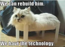 Success Cat Meme - the operation was a success meme by ms meow memedroid