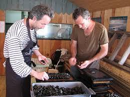 cuisine pal駮lithique cuisine pal駮lithique 10 images cuisine pal駮lithique 28 images