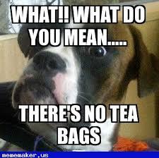 Meme Online Maker - awesome meme in http mememaker us doi boxer dog meme creator