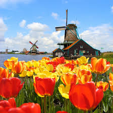 Netherlands Tulip Fields 14 Reasons To Visit The Netherlands In Spring Netherlands Tourism