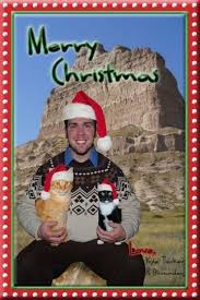 christmas cards with just you and your cats just say no the