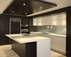 Kitchen Design Houzz by Small Modern Kitchen Design Ideas Best Small Modern Kitchen Design