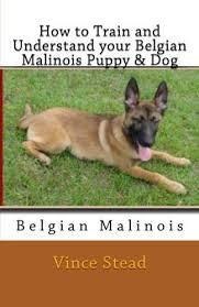 belgian malinois quotes 27 best belgian malinios images on pinterest german shepherds
