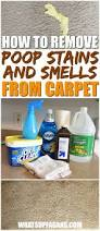 Best Clothing Stain Remover 4 Easy Ways To Remove Baby Stains