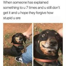 Memes Explained - dopl3r com memes when someone has explained something to u 7