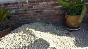 How Much Gravel Do I Need In Yards Replaced Lawn With Landscape Gravel Pt 1 Youtube