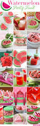 Canned Food Sculpture Ideas by Watermelon Party Food Food Birthdays And Watermelon Birthday