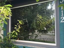 house window tint film window tints films or coatings what is right for your windows