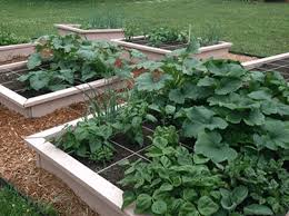 build a 16 sqft raised garden bed for less than 20
