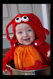lobster halloween costumes 6 months you have got to be kidding me erika krause