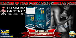 hammer of thor forex asli pembesar penis klg herbal