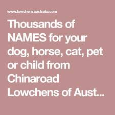 Names That Mean Comfort 26 Best Images About Character Nanes On Pinterest Cats Pet And