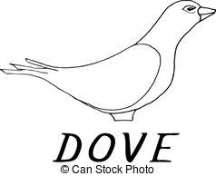 vectors illustration of dove on hand vector illustration of dove