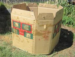 cardboard compost bins shaun u0027s backyard what is permaculture