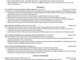 resume clean resume templates free clean resume template free
