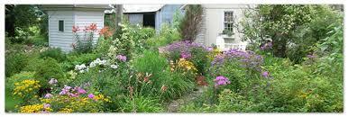 heirloom plants perennial flowers heirloom gardening
