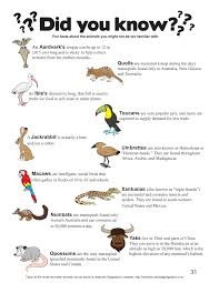 the fun facts page from my how to draw animals book for kids