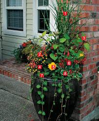 Plants For Patios In The Shade Stylish Shady Containers Fine Gardening