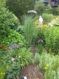 native plant gardening adirondack garden club