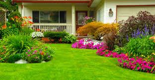 spring landscaping spring landscaping tips