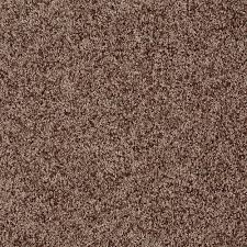 home decorators collection carpet sample star city in color
