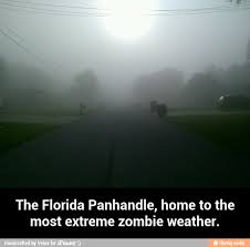 Meme Zombie - another zombie weather meme by velox memedroid