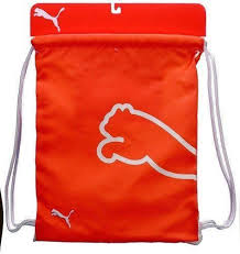 North Carolina travel shoe bags images Nike shoe bag ebay JPG
