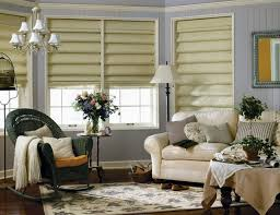 Vertical Blinds For Living Room Window Awesome Blinds For Living Room Windows Photos Rugoingmyway Us