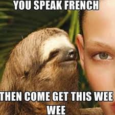Sloth Whisper Meme - this whisper sloth is ridiculous and hilarious seriously