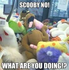4 Day Weekend Meme - 4 scooby doo what re you doing funny meme pmslweb