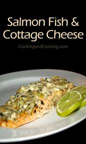 Cooking Cottage Cheese by Salmon Fish With Cottage Cheese Recipe Fish Recipe Cooking And