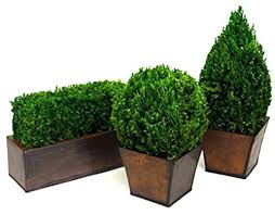 artificial topiary tabletop set 3 pieces small potted trees