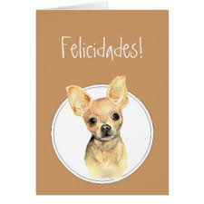 chihuahua birthday greeting cards zazzle