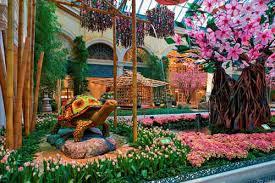 Bellagio Botanical Garden Japanese Gardens At Conservatory Botanical Gardens