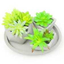 succulent pots succulent pots suppliers and manufacturers at