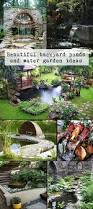 best 20 water gardens ideas on pinterest water garden plants
