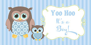 baby shower banners owl boy baby shower banner