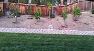 Design A Pretty Backyard Landscape By Planting Fruit Trees - Designing your backyard