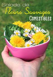 les fleurs comestibles en cuisine salade de fleurs sauvages comestibles enfants ados savoir