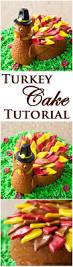 best 25 turkey cake ideas on pinterest pumpkin pie crust pi