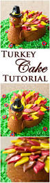 Halloween Cake Tutorial Best 25 Turkey Cake Ideas On Pinterest Pumpkin Pie Crust Pi