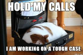 Lawyer Cat Meme - lawyer cat is busy by theawesomeautist meme center