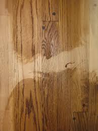 refinish hardwood floors priceplace