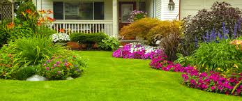 nice simple design of the easy yard ideas that has green nuance